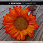 Author Chandra Sparks Splond Shares 10 Scriptures of Thanksgiving