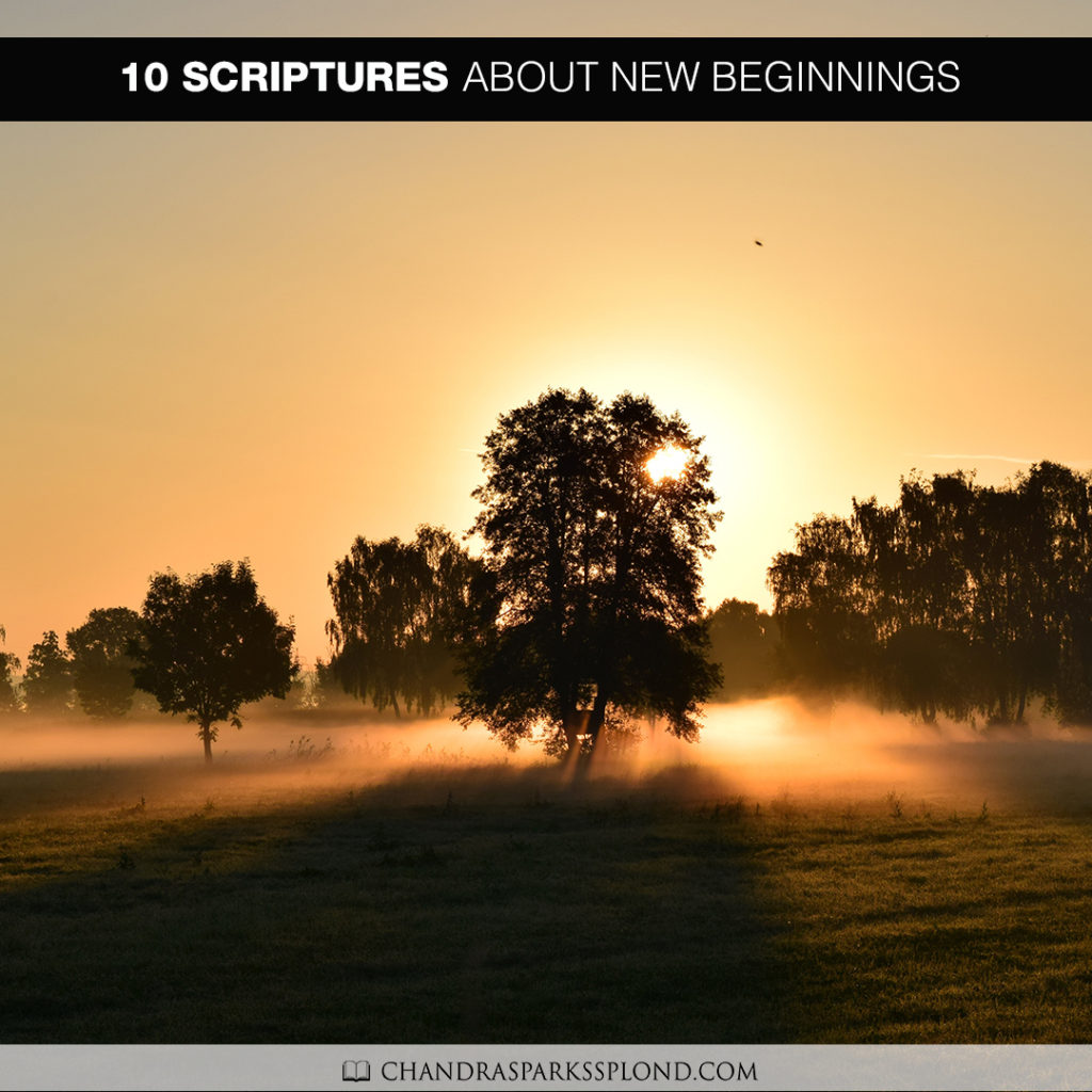10-scriptures-about-new-beginnings