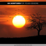 Six Scriptures for Rough Seasons (Best of the Book of Splond)