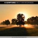 10 Scriptures About New Beginnings (Best of Book of Splond)