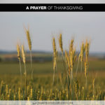 Join Chandra Sparks Splond in Saying a Prayer of Thanksgiving